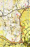 mapacampespp.jpg